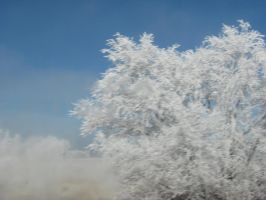 Icicle tree by firestar4ever90