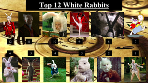 Top 12 White Rabbits by JJHatter