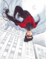 COMMISSION: Dick Grayson (Nightwing) by silvertales