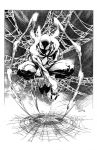 Spiderman by Zoor