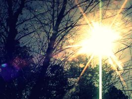 Shine On. by leannlaughlove