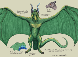 Species Reference: Northern Wyvern by SlateGray