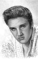 Elvis by reighrome