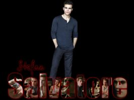 Stefan Wallpaper 2 by angiezinha