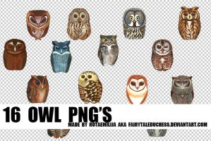 16 OWL PNG'S by fairytaleduchess