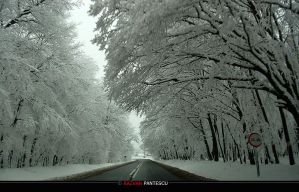 Winter roads..9 by razvanx