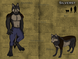 Silverst Character Sheet by Silverst