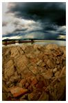 before the storm by Pawin