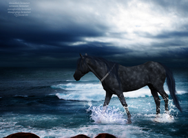 A Stormy Way by shiasgraphics