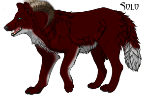 Solomon the Wolfer by TheDivinePhire