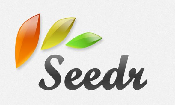 Seedr Logo by cpothemes