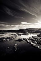 La Perouse Sun by andrewkevin