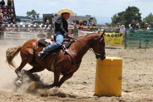 Taupo Rodeo 187 by Sooty-Bunnie