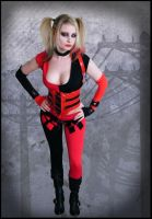 Harley Quinn- Arkham City 2 by drowningstar