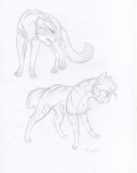 Warrior Cats x2 by KasaraWolf