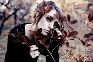 autumn souls 2. by vevuccina