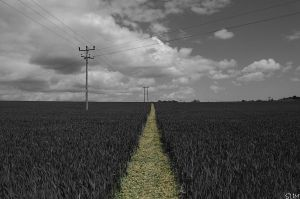 Power Path by slimboydim