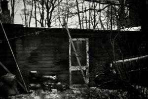 A woodcutters son by Carenza