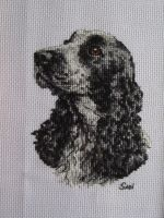 Dog cross stitch by Santian69