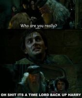 Doctor Who/Harry potter funny by Gizmo971