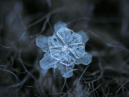 December 18 2015 - Snowflake 2 by ChaoticMind75