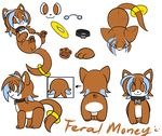 Feral money ref by Terasuchan