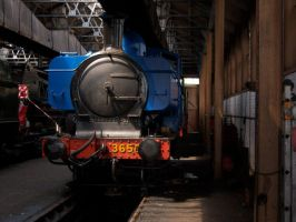The Blue Pannier Tank by rh281285
