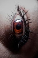 Macro Eye by HotShoeBomber