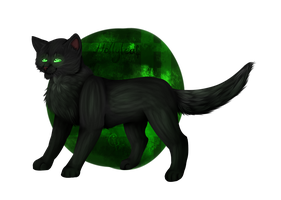 Hollyleaf by Starpuke