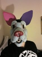 WIP First Fursuit head front by Wolffe-Soulspirit