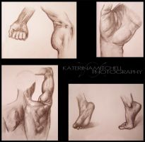 Anatomy Studies by Katerina423