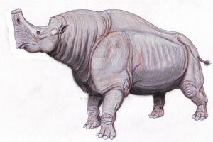 Embolotherium andrewsi by DiBgd
