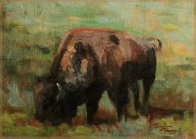 American Bison by 2xreavis