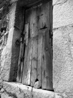 Old door by LetoCrows