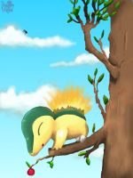 Cyndaquil by Pand-ASS