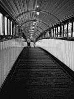 over the lines by awjay