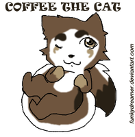 Coffee the cat by FunkyDreamer