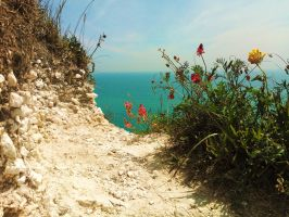 On The White Cliffs Of Dover by Meret-Alexandra