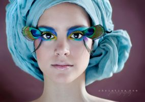 Peacock II by onechristina