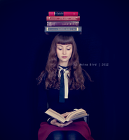 The Bookworm by Anina-Bird
