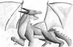 Dragon in Pencil by Jesse-The-Ookami