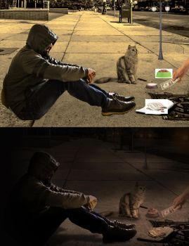 stuff-begging with my cat by Ismail-Qutaibh