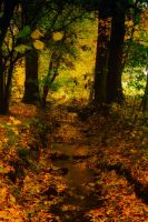Herbst 03 by Anschi71