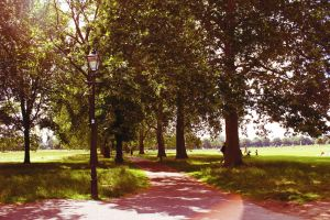 The Clapham Sun by NatPal