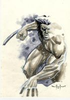 wolverine copic sketch by qualano