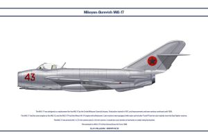 MiG-17 Guinea-Bissau 1 by WS-Clave