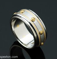 Steel and Gold Ring by Spexton