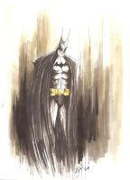 Gotham needs a hero by MikimusPrime