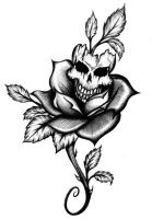 Skull Rose by 13star