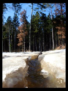 Little Ice Stream2 by ChristinaH292